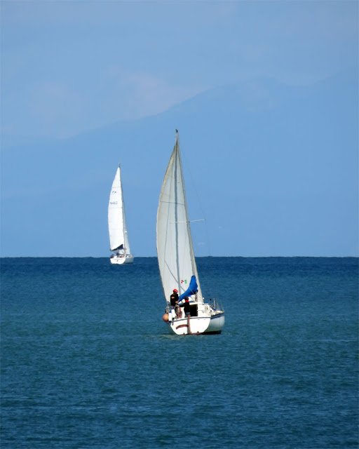 A good day for sailing, outside the Porto Mediceo, Livorno
