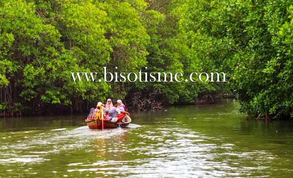 Meresapi Indahnya Ekowisata Mangrove Sunge Jingkem Sembilangan
