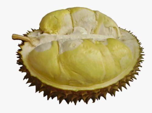 Tips Membeli Durian