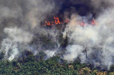 A foto mostra fogo na  floresta amazônica. Essa foto mostra colunas de fumaça em um trecho de fogo de dois quilômetros a cerca de 65 km de Porto Velho, no dia 23 de agosto.