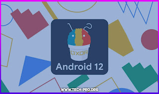 android 12 supported devices
