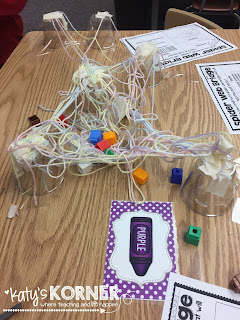 Spider Web Bridges STEM Project