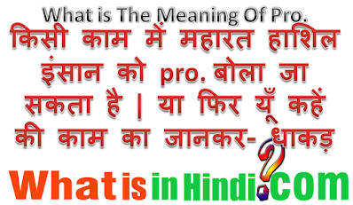 What is the meaning of Pro in Hindi