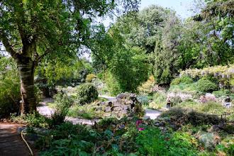 Paris : Jardin Alpin du Muséum national d'Histoire naturelle, l'atout charme du Jardin des Plantes - Vème