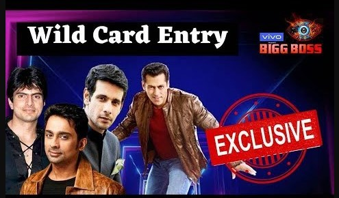 Revealed ! Bigg Boss 13: Wild Card Entries Of This Season Are….
