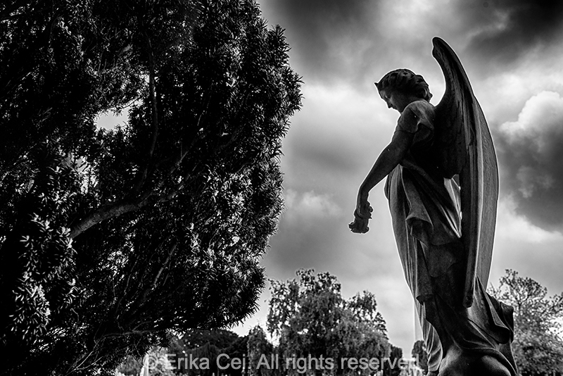 Glasnevin, Dublin, Ireland, angel, statue