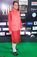 NTR and others Celebs at  at IIFA Utsavam Awards 2017  Day 2   Part 3 ~  13.JPG