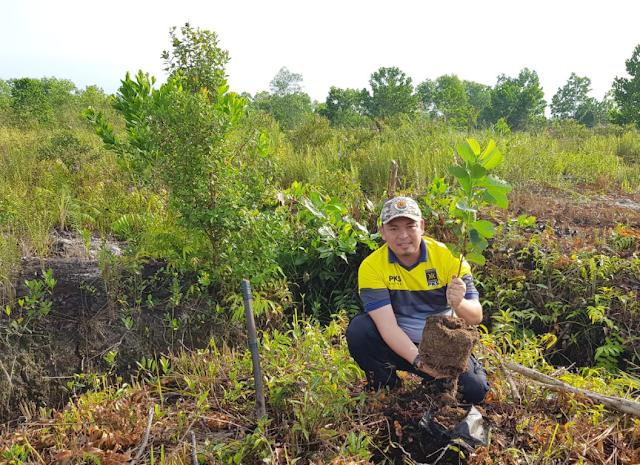PKS Kalteng Inisiasi Gerakan Tanam Pohon Hijaukan Lahan Karhutla