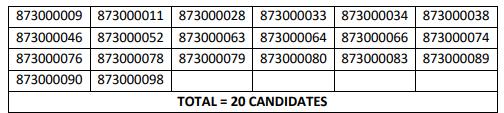 HPSSC Hamirpur  Havildar Instructor/ Quarter Master Havildar Post Code: 873 Screening Test Result 2021