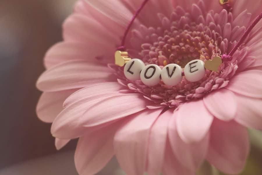 Flor e love
