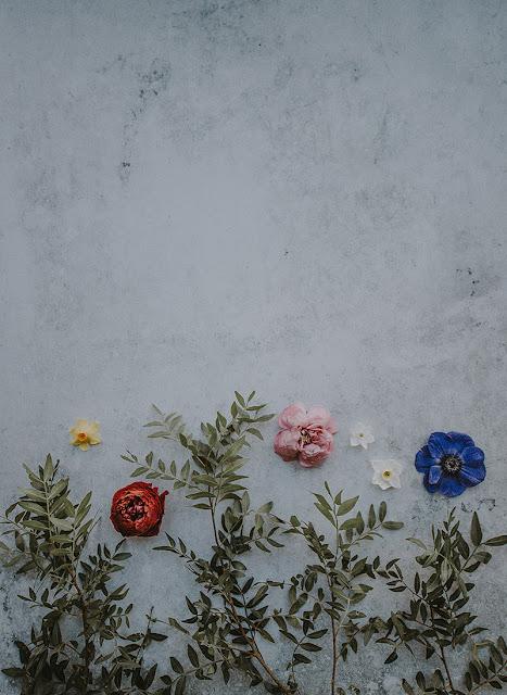 خلفيات زهور جميلة للجوال 4