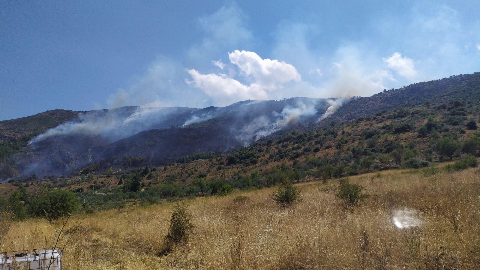 Σχεδόν 30 δασικές πυρκαγιές το τελευταίο 24ωρο