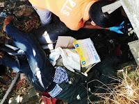 Warga Marang Digegerkan Dengan Penemuan Mayat Didalam Got Jalan Poros Pangkep