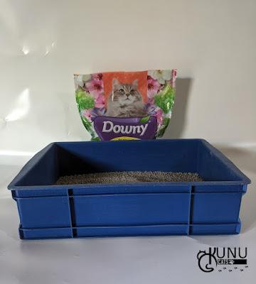 Review Pasir Kucing Downy