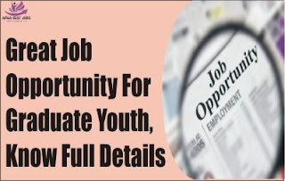 Great Job Opportunity For Graduate Youth, Know Full Details