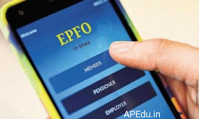 EPF Balance: How many money are in your PF account? Learn these steps.