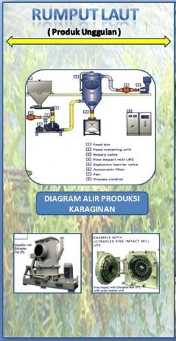 Pabrik Rumput Laut Cahaya Perkasa Indonesia