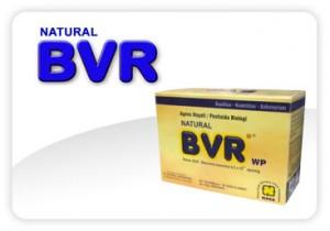 Natural BVR Pengendali Hama