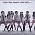 Subtitle MV AKB48 - Beginner