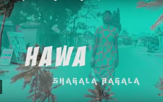 DOWNLOAD VIDEO | Hawa Ntarejea - Shagala Bagala mp4