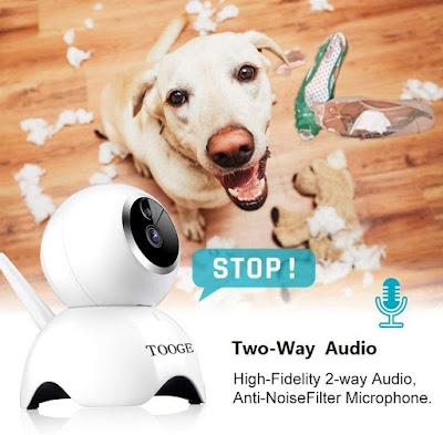 Pet Dog Camera