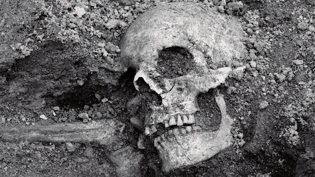 Embarcações Vikings encontradas na Suécia, Embarcações Vikings encontradas por arqueólogos, Rituais Funerários Vikings, Vikings, História, Descobertas Arqueológicas, Descobertas Históricas