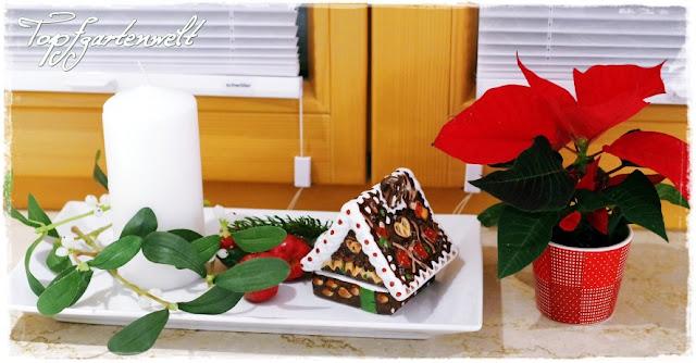 Gartenblog Topfgartenwelt Weihnachten: Weihnachtsdeko für Fensterbank
