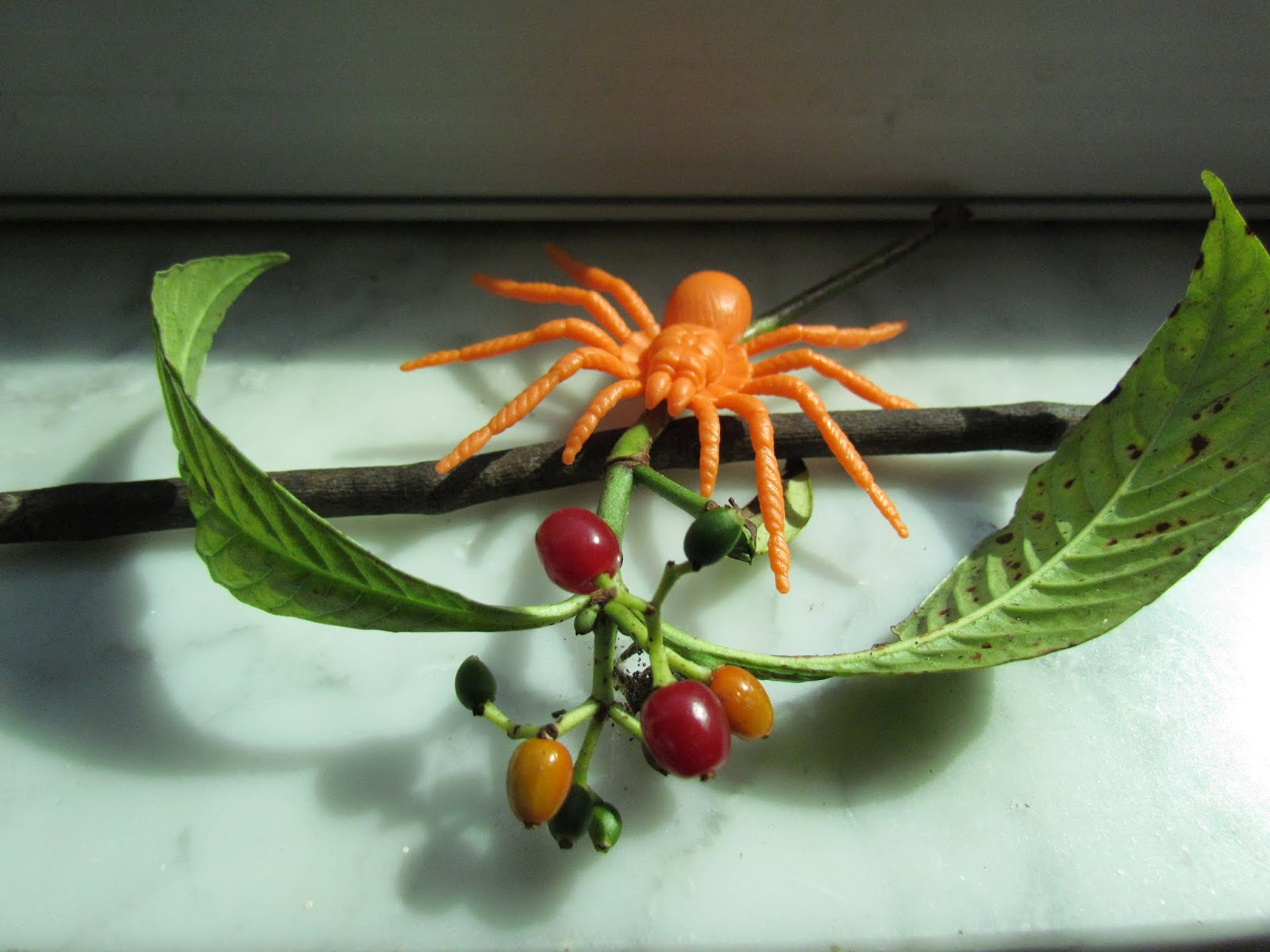 An Orange Toy Halloween Spider and Red Berries Forest Foliage