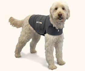 ThunderShirt-dog-anxiety-vest