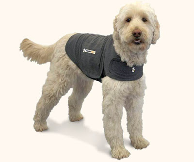 ThunderShirt-dog-anxiety-vest
