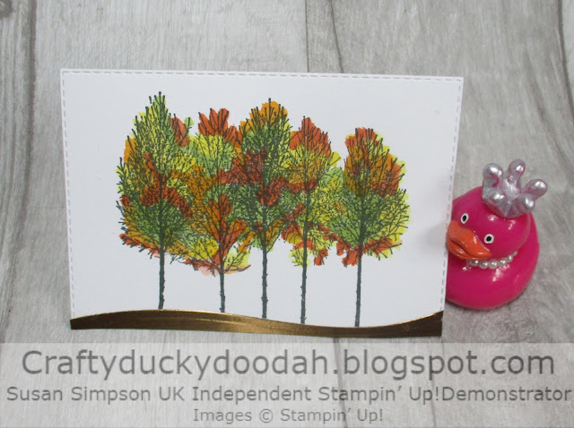 Craftyduckydoodah, Winter Woods, In The Woods, Stampin' Up, Ink Stamp Share,