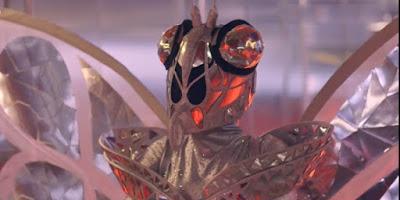 indizi farfalla cantante mascherato