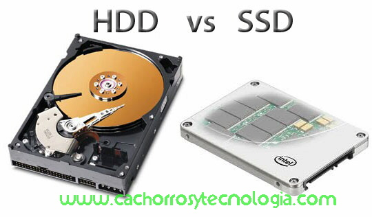 HDD vs SSD no fiables aún shurkonrad cachorros y tecnologia