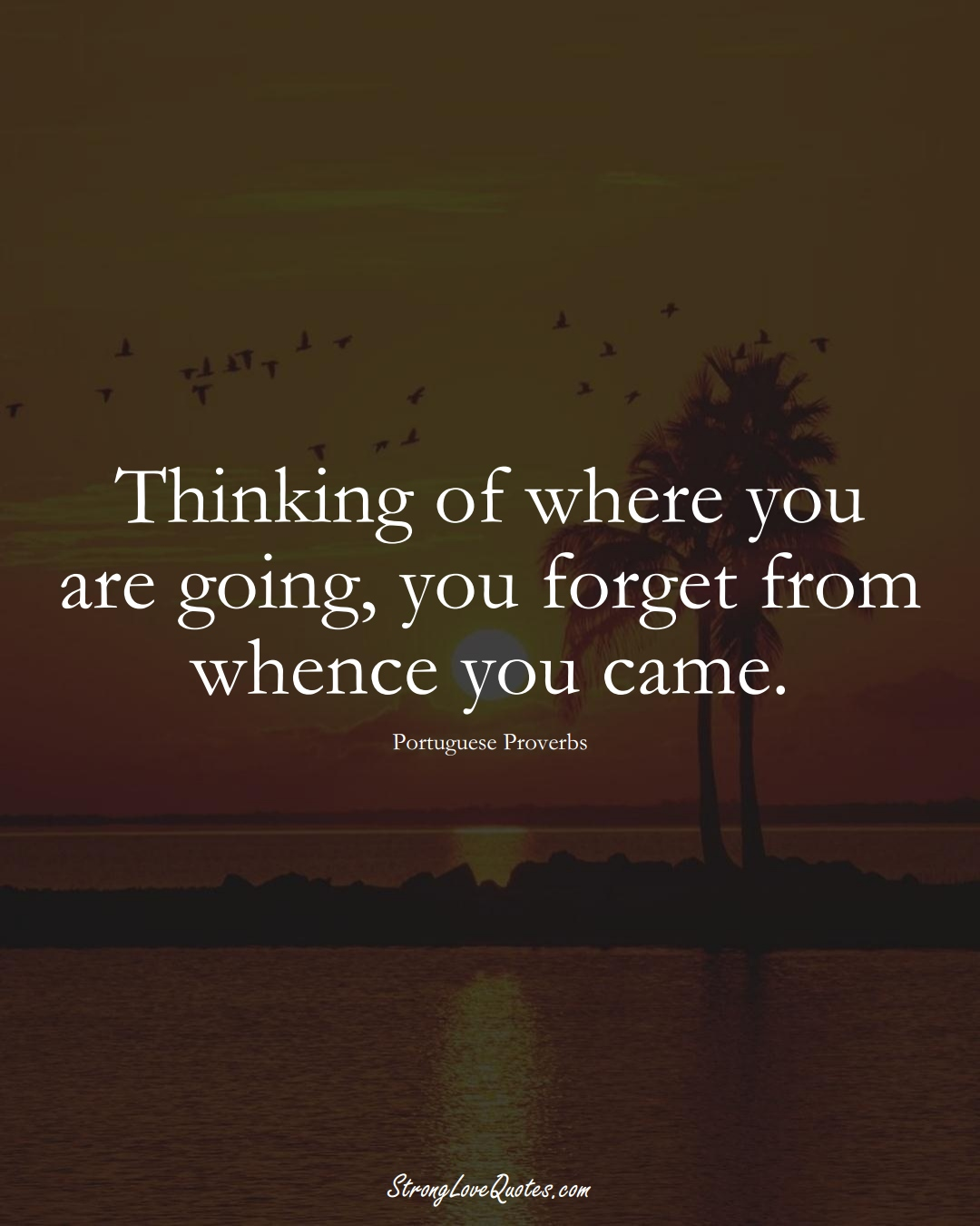 Thinking of where you are going, you forget from whence you came. (Portuguese Sayings);  #EuropeanSayings