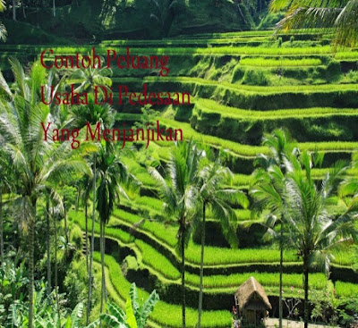Peluang Usaha di Pedesaan yang Menjanjikan