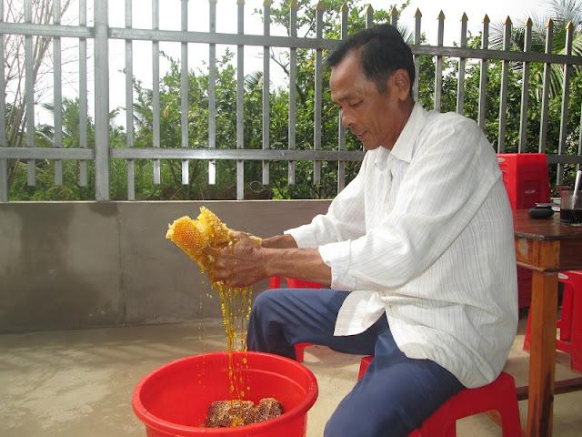 Discovering honey-harvesting tour in U Minh Ha Forest 3