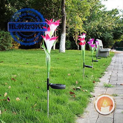 Đèn led hoa Lily sạc pin năng lượng mặt trời