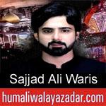 https://humaliwalaazadar.blogspot.com/2019/09/sajjad-ali-waris-nohay-2020.html