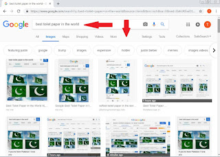 Why Pakistan's green flag is coming to search 'Best Toilet Paper in the World' on Google.