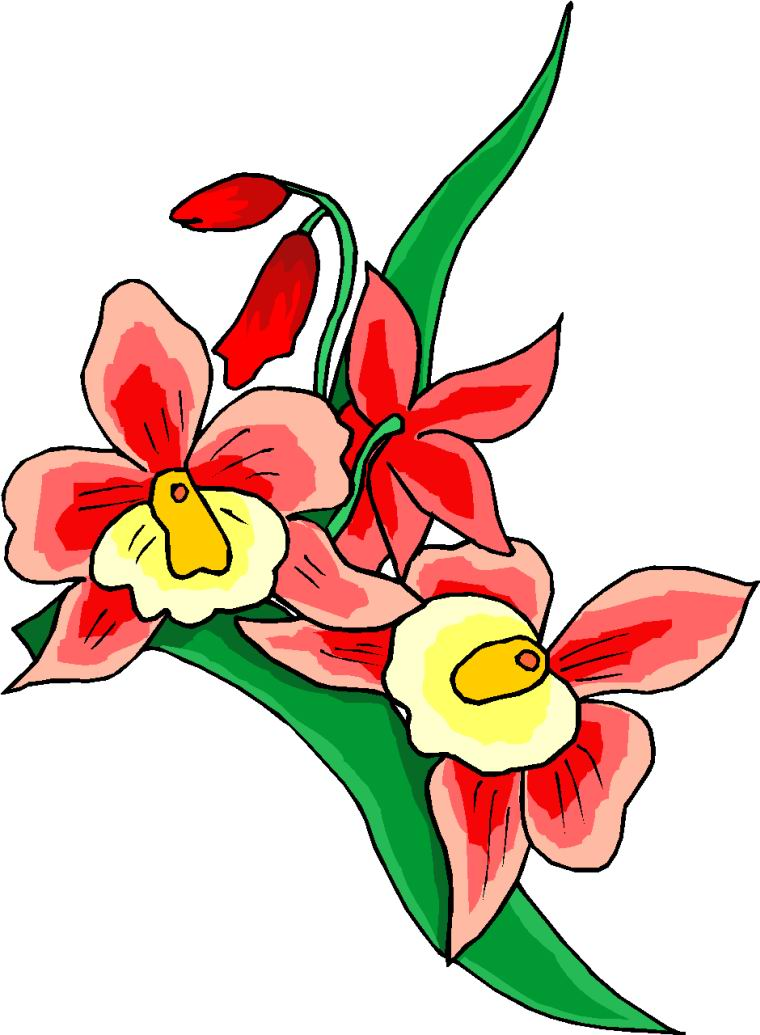 All Cliparts: Flowers Clipart