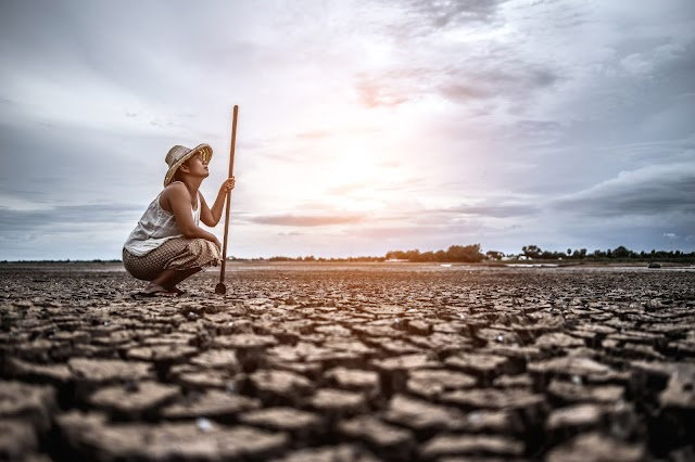 All about Global warming: Agriculture is Affected by Global Warming, Basics of Global Warming...