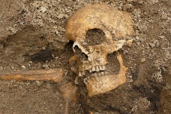 Ruínas de Barco Viking revelam esqueletos de homem, cavalo e cachorro - Img2