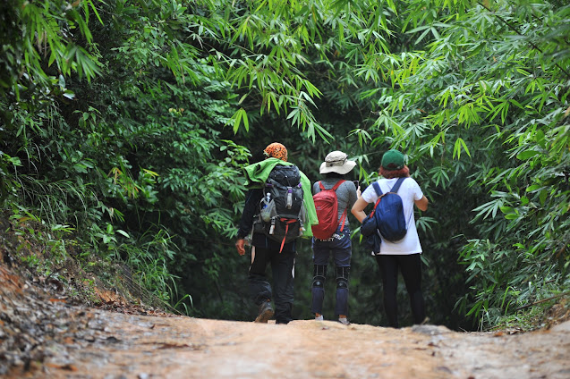 Trekking băng rừng Núi Dinh