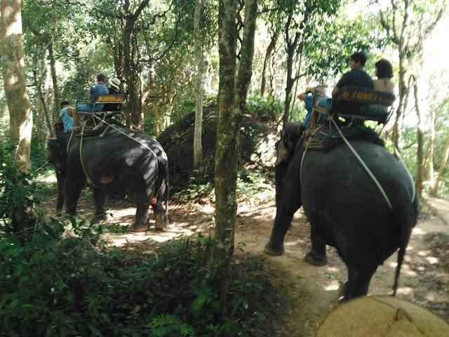 SIAM, Elephant Safari, Phuket
