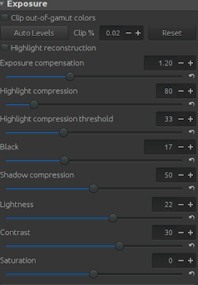 Exposure settings in RawTherapee of the image to recover the dark areas.
