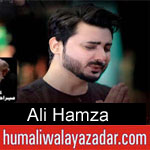 https://www.humaliwalayazadar.com/2017/01/ali-hamza-nohay-2016-to-2018.html