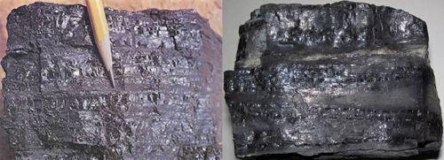 batubara bituminus