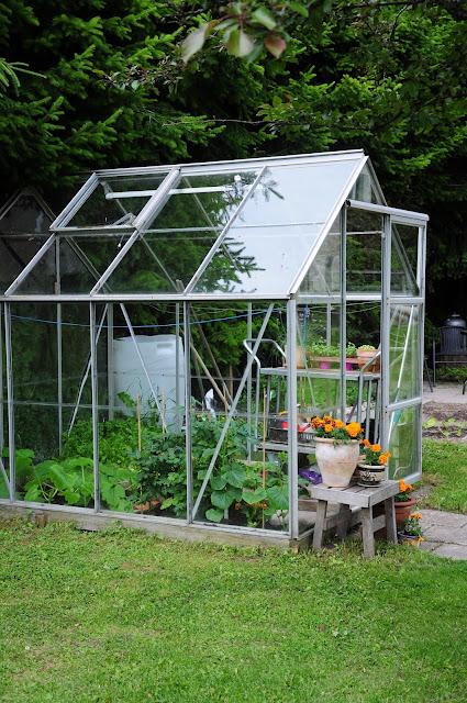 kasvihuone piha puutarha simola