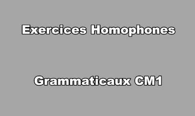 Exercices Homophones Grammaticaux CM1