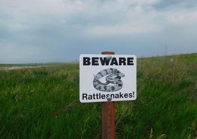 hati-hati ular berbisa bahasa inggrisnya beware of rattlesnakes